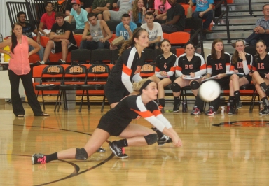 0 Haley Alcorn Volleyball HS 018cropped