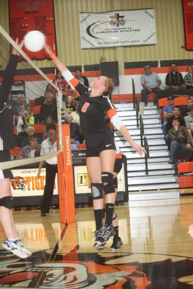 0 Hoppe Volleyball HS 159